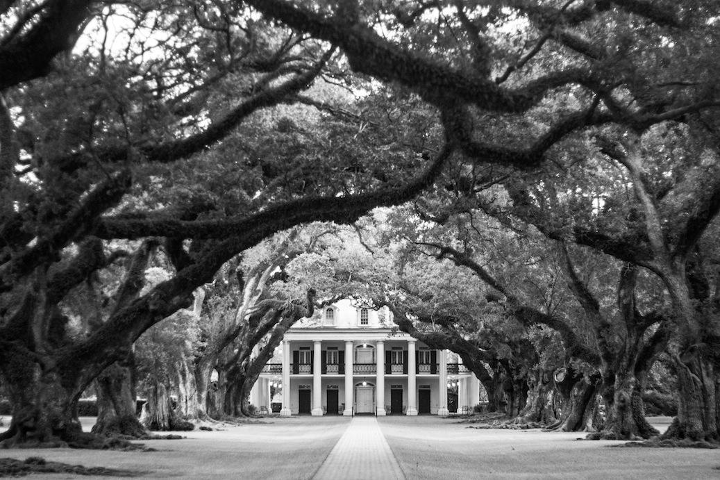 Plantación de azúcar de Nueva Orleans