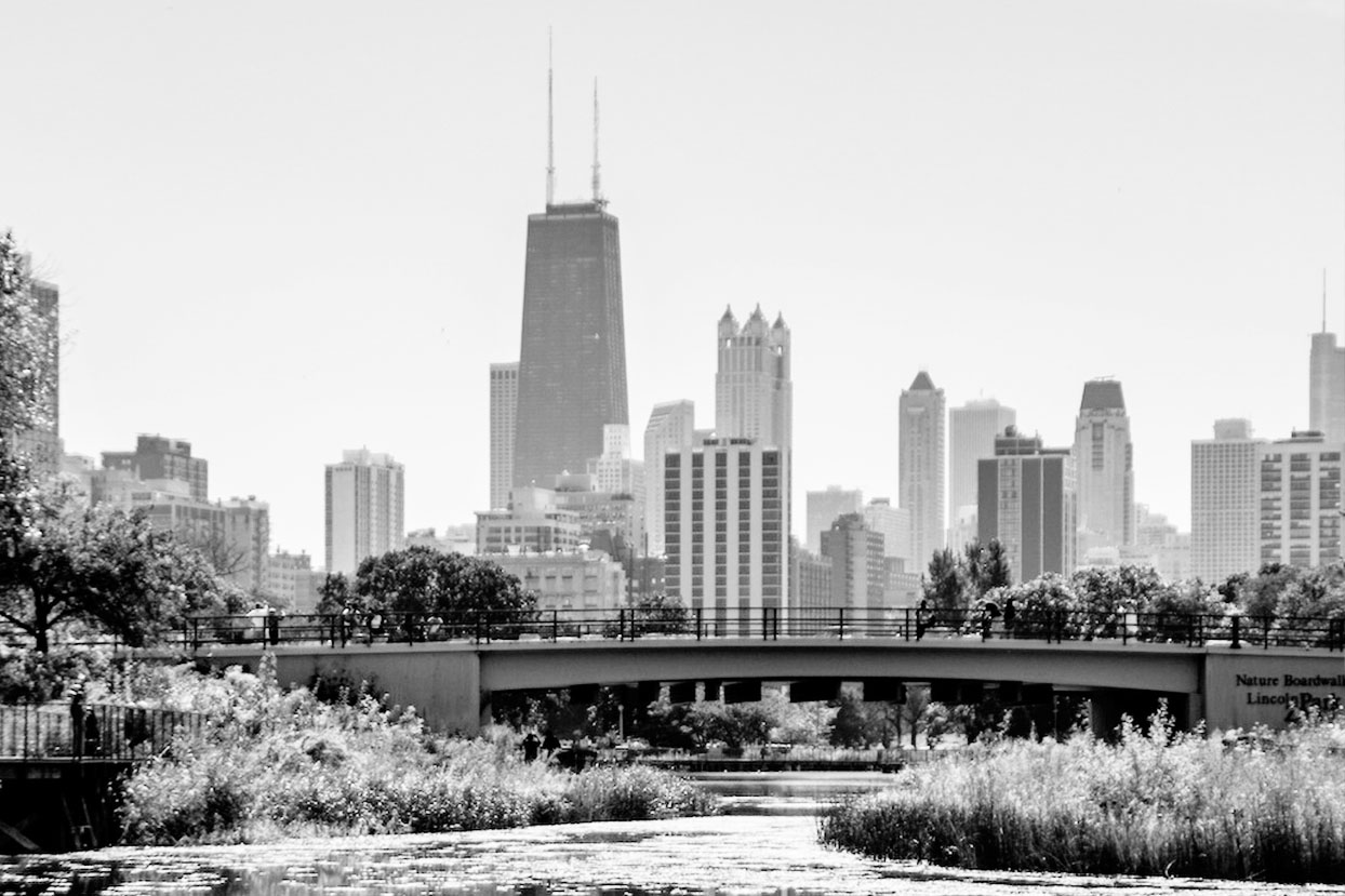 chicago66